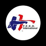 Here is the logo for the Federation of English Karate Organisations